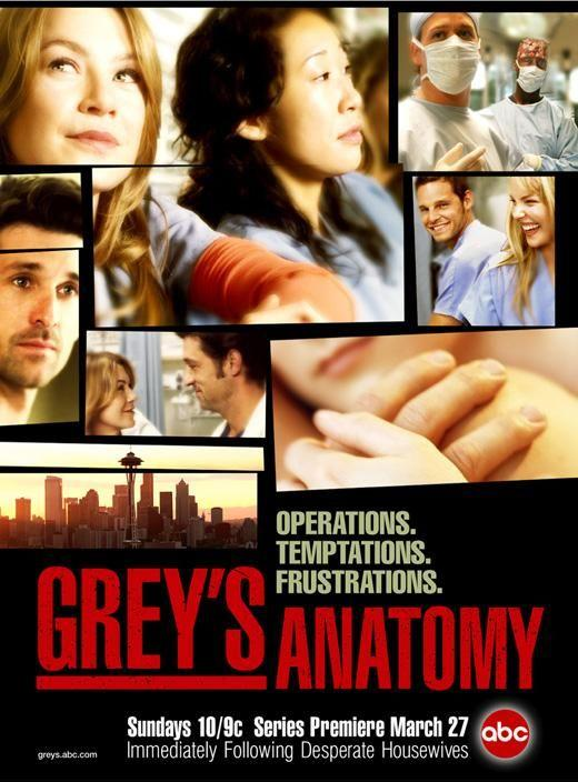 Anatom_a_de_Grey_Serie_de_TV-957926722-large